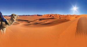 Sahara desert Merzouga. Enjoy it