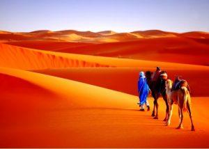 Visit Sahara desert of Merzouga