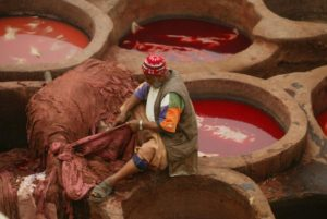 Tanneries in Fes, imperial city tour